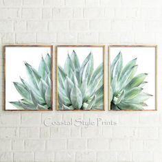 Set Of 3 Prints Cactus Wall Decor Cactus Wall ArtCactus Cactus Wall Art, Cactus Print, Succulent Wall Art, Cactus Vert, Cactus Cactus, Cactus Decor, Image Cactus, Cactus Photography, Modern Photography