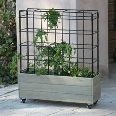Belham Living Cottonwood Planter on Wheels with Trellis | Jet.com