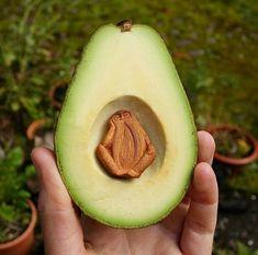 Avocado art❣
