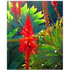 Trademark Fine Art Backlit Arborescens Canvas Wall Art by Amy Vangsgard, Size: 18 x 24, Multicolor