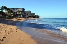 Maui with Kids: 5 Free and Fun Attractions - The World Is A Book