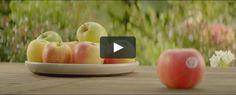 3 commercials for the famous apple Gout - 10'' Naturalité - 15'' Récolte - 10''  Director : Stéphane Berla Agency…
