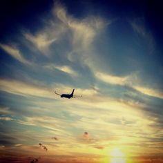 Flying off into the sunset.