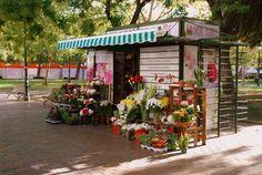 Conoce el Quiosco de flores de la Plaza de los Sitios de Zaragoza - Tienda Online de Flores en Zaragoza. Siete Flores