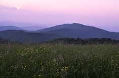 a Max Patch evening near Asheville ~ by photographer Ken Parish Blue Ridge Parkway, Blue Ridge Mountains, Great Smoky Mountains, Purple Mountain Majesty, Mountain City, Picture Places, Stunning View, Beautiful, Vacation Spots