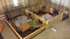 DIY Rabbit Cages Holland Lop Bunnies, Rabbit Cages, Bunny, Wood, Diy, Cute Bunny, Woodwind Instrument, Bricolage, Timber Wood