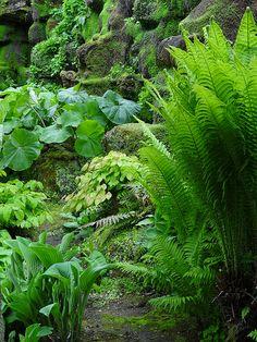 ~ Hever Castle & Gardens, Edenbridge