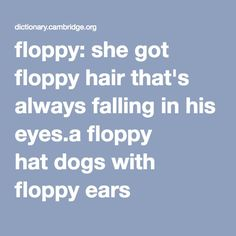 floppy: she got floppy hair that's always falling in his eyes.a floppy hat dogs with floppy ears