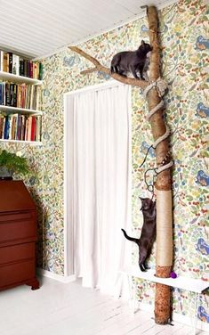 Cat scratching and climbing post DIY instructions #catmemes #CatLitter