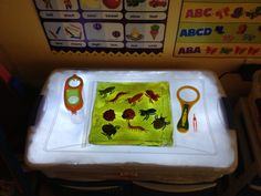 Fun with bugs and squishy bags on the light table
