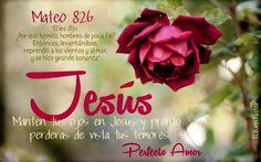 Manten tus ojos en Jesús y pronto perderás vista de tus temores.