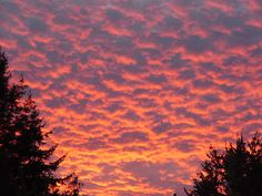Eugene, OR sunset 2
