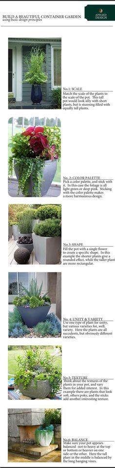 creating a well designed container garden copy