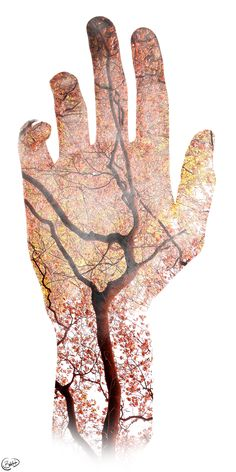 Nature in our Veins | Double Exposure | Tree and Hand
