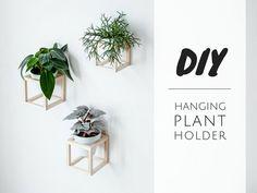 In diesen coolen hängenden Pflanzenhaltern werden deine Pflanzen zum Dekoobjekt an der Wand. Mit ein bisschen Geduld baust du deinen eigenen Pflanzenhalter.