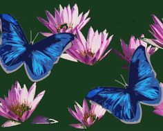 Check out this item in my Etsy shop https://www.etsy.com/listing/185756888/blue-butterflies-pink-lillies-acrylic