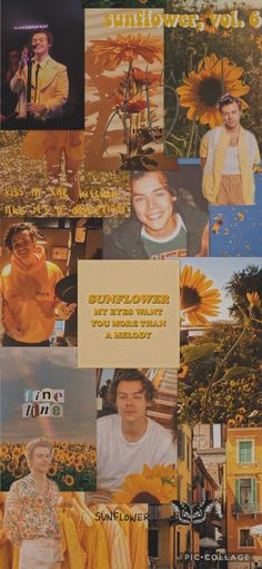 Harry Styles Poster, Harry Styles Quotes, Harry Styles Baby, Harry Styles Pictures, Harry Edward Styles, L Wallpaper, Iphone Background Wallpaper, Aesthetic Iphone Wallpaper, Aesthetic Wallpapers