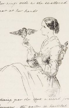 ~illustration of florence nightingale & her owlet, athena as found in the book The Life & Death of Athena: an owlet from the Parthenon.. written & illustrated by florence's sister, frances parthenope verney.  circ @1855