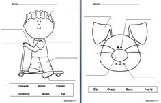 Las Partes del Cuerpo-   This PDF download includes three worksheets for students to label body parts in Spanish.  Body parts include:  Cabeza, hombro, brazo, mano, pierna, pie, ojo, oreja, boca, nariz, pelo, codo, mueca, y rodilla.  Each sheet has a black and white image on it, so students can also color in the pictures once they have completed the labeling.  Answer keys are also included for all three sheets.