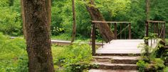 glen helen photo wooden walking bridge - John Bryan state park and Clifton Gorge