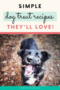 It's a bit challenging to find treats that are pleasing and healthy for my dogs. I started a search for the best quick and easy dog treats. Here are some fantastic and healthy simple treats for dogs! Peanut Butter Dog Biscuits, Peanut Butter Dog Treats, Pumpkin Dog Treats, Diy Dog Treats, Puppy Treats, Easy Dog Treat Recipes, Dog Food Recipes, Quick Recipes, Pet Care Tips