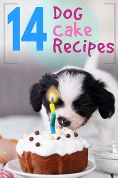 Pupcakes and Birthday Cake Recipes for your special dog or puppy. Make homemade and healthy treats this year to properly celebrate with your furry friend :)