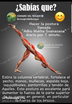 How to Become More Flexible with Yoga in 28 Days - Days Flexible yoga Kundalini Yoga, Yoga Meditation, Yoga Hatha, Health Education, Physical Education, Yoga Anatomy, Yoga Mantras, Sup Yoga, Yoga Posen