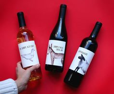 """Run into trouble this weekend? Grab a bottle of """"I'm Sorry"""" wine from Windsor Vineyards & redeem yourself with a #winepology."""