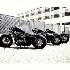 Harley Davidson News – Harley Davidson Bike Pics Sportster 48, Custom Sportster, Harley Davidson Sportster, Bobber Custom, Custom Harleys, Harley Bobber, Bobber Chopper, Forty Eight, Biker Girl