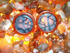 bloodwood with spider web agate plugs by Earth Organics Plugs Earrings, Thing 1, Body Mods, Gauges, Body Jewelry, Spider, Agate, Piercings, Earth