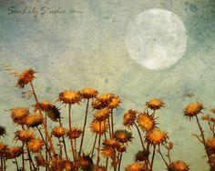 Sweetness par Shani Jacobi sur Etsy