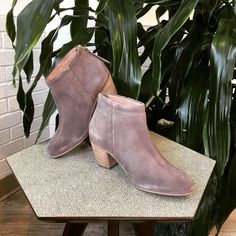 Hello perfect fall bootie. I've been waiting for you...  #betsykingshoes #paseoartsdistrict #thatsdarling #seychellesshoes