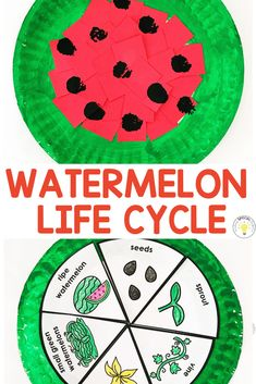 Teachers, are you looking for a fun theme to celebrate the end of the year with your students? Instead of a watermelon day enjoy a.