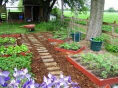 Raised bed garden area