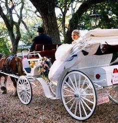 THIS HAS ALWAYS BEEN MY DREAM-- white horse carriage intsead of a limo or decorated car to leave in after my wedding reception! :)