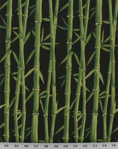 Bamboo stalks adorn this tropical outdoor fabric. Colors are hunter, grass green, and black. Excellent for decks, poolsides, and patios. Also great for cushions, throw pillows, tablecloths, and even shower curtains. Medium stiff drape.
