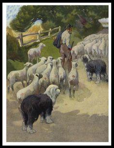 Prints Old English Sheepdog - Bing images