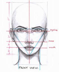 * Head & Face & Skull * 8