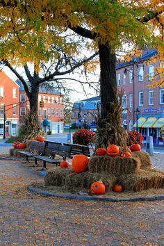 Nobody celebrates Fall like Newburyport -The Pumpkin Festival Fall Harvest…