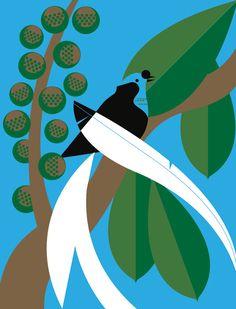 Birds Of Paradise 2 by Eleanor Grosch