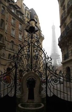 Love this photo I took on a foggy day in Paris out exploring the Art Nouveau architecture in the 7th arrondissement.