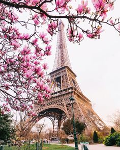 Doesn't the Eiffel Tower look pretty in pink? Who would you like to join you to experience spring in Paris? Beautiful Paris, I Love Paris, Torre Eiffel Paris, Paris In Spring, Paris Wallpaper, Paris Photography, Pretty Wallpapers, Travel Light, Paris Travel