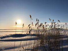 Millainen mökki? - Valkoinen Harmaja Spring Blooms, Great Coffee, Slow Living, Finland, Culture, Sunset, Outdoor, Lifestyle, Outdoors