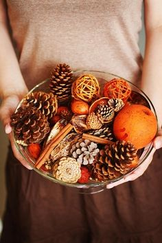 ∷ Variations on a Theme ∷ Collection of pinecones...Heavenly smell of the holidays: