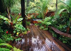 small home tropical landscapes - Google Search
