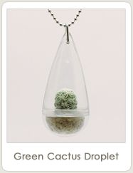 GemSprouts - Living Plant Jewelry
