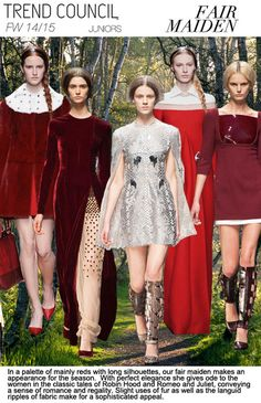 F/W 2014-15, juniors contemporary trend themes, fair maiden