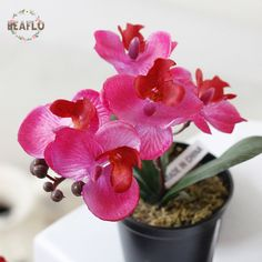 1PC Mini Artificial Potted Flowers Butterfly Orchid Silk Flower Bonsai For Wedding Home Party Decorative #Affiliate