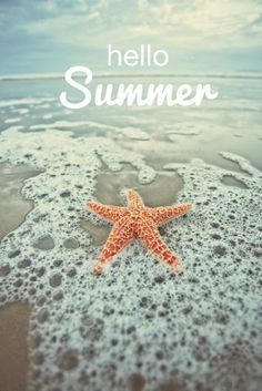Sally Lee by the Sea Coastal Lifestyle Blog: Hello Summer!
