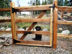 Creative and DIY dog fencing ideas you won't believe! Keep your furry friends (and kids) safe and sound! From Strategic Fence and Gate Company in Breckenridge, Colorado.